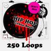Thumbnail 250 Hip Hop Urban Loops