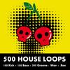 Thumbnail 500 House Loops