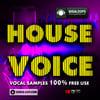 Thumbnail House Voice
