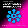 Thumbnail 300 House Bass Loops