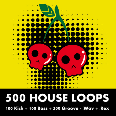 Product picture 500 House Loops
