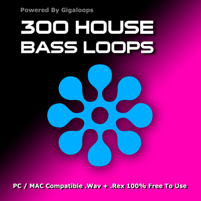 Product picture 300 House Bass Loops